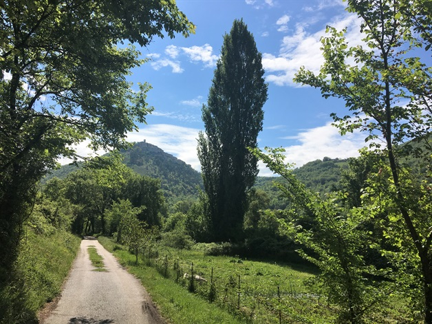 Camino Via Francigena Way of St Francis umbria self-guided 7